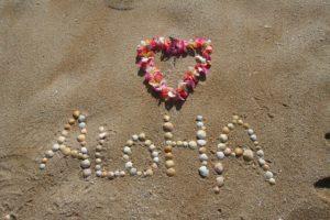 aloha-305853_640