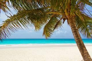 rsz_beach-84631_640